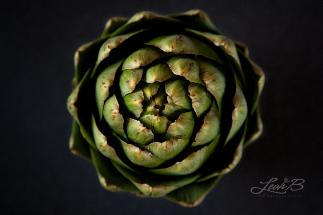 The Artichoke